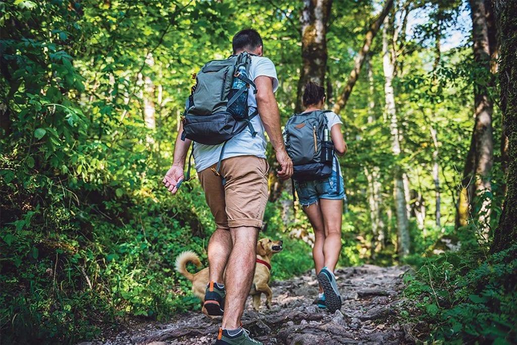 backpackers-hiking