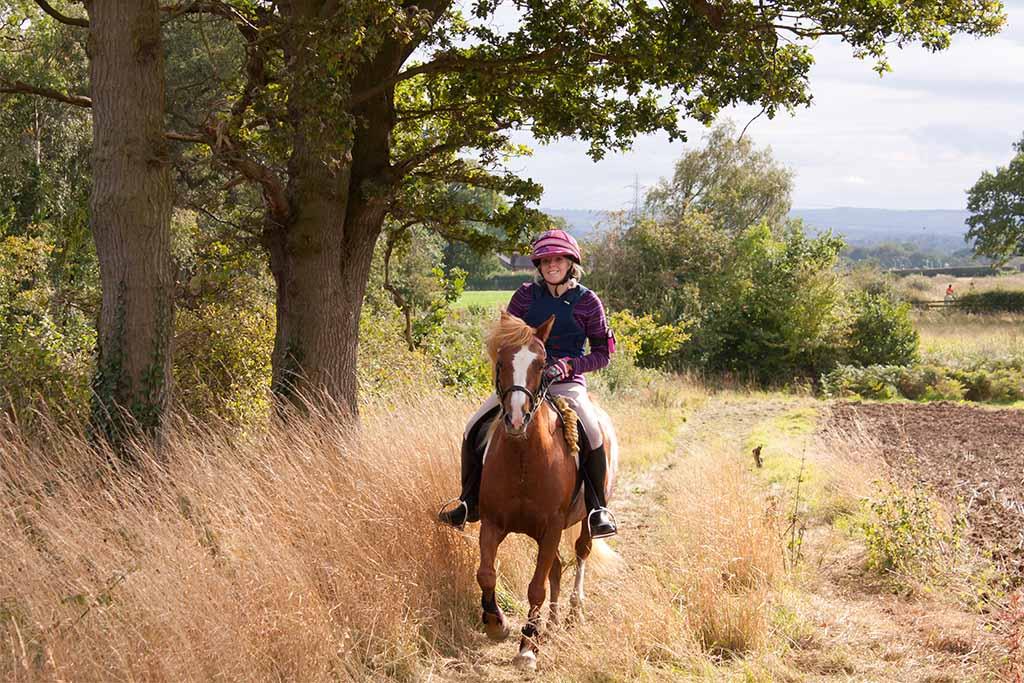 Banner Elk horseback riding